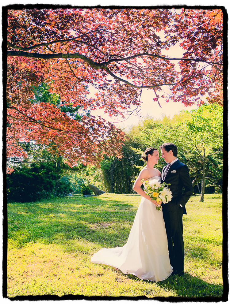 Axuve and Laura were married at The Hammond Museum and Japanese Stroll Garden in Connecticut.  This beautiful red maple tree was irresistable as framing for this sweet just-married portrait.