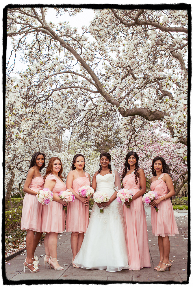 Lincy and her bridesmaids were lovely in soft pinks for this April wedding at The Palm House at Brooklyn Botanic Garden.
